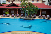 Dolphin Pool - Sabai Lodge